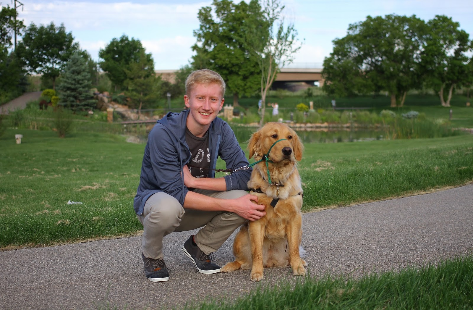 no bones about it guide dogs for the blind s blog  ian smiles posing a golden retriever guide dog puppy a green field and trees