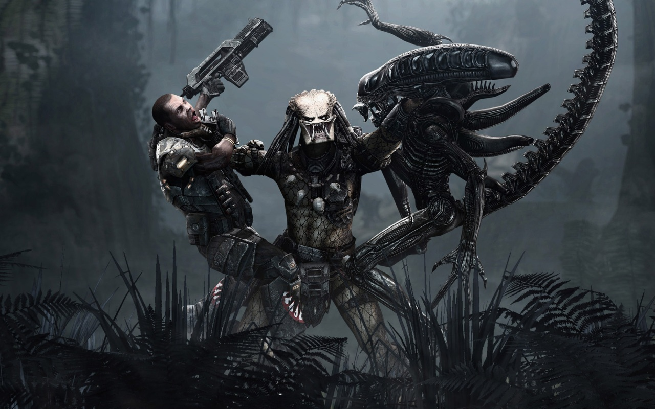 http://4.bp.blogspot.com/-LnPYIg1dQ2g/TjekHz9PcpI/AAAAAAAAAF4/Zbt7HLfOSyA/s1600/Aliens-vs-Predator_Predator-Imba-wallpaper.jpg