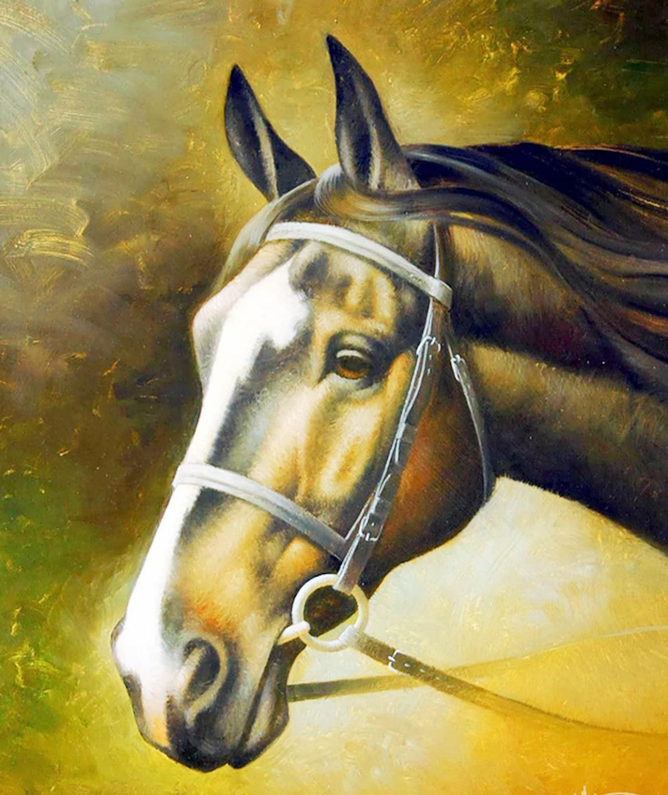 caballos-criollos-pintados