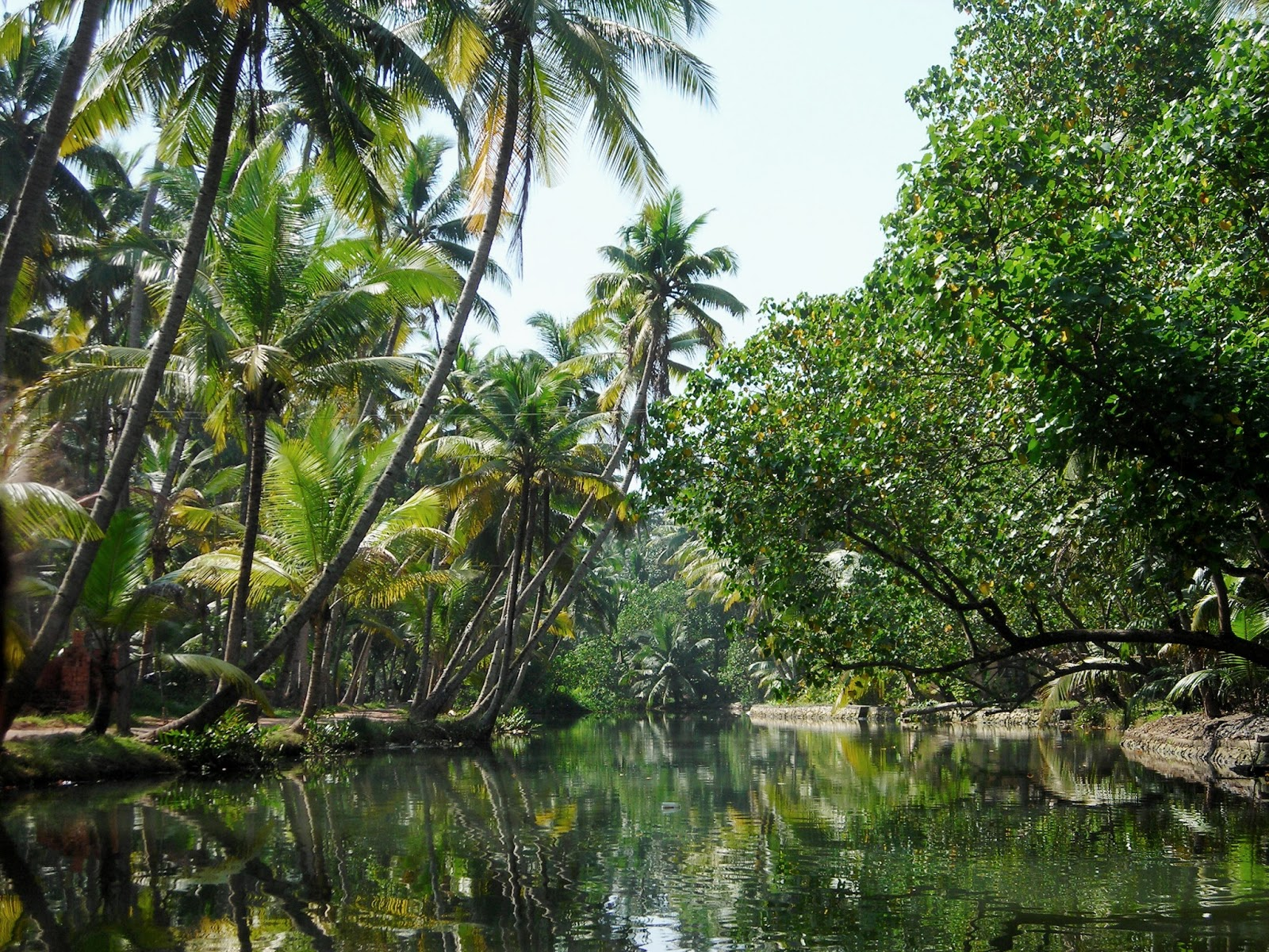 Kerala a voyage to kerala state india - Nature ke wallpaper ...
