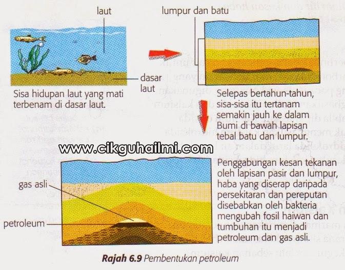 Pembentukan petroleum