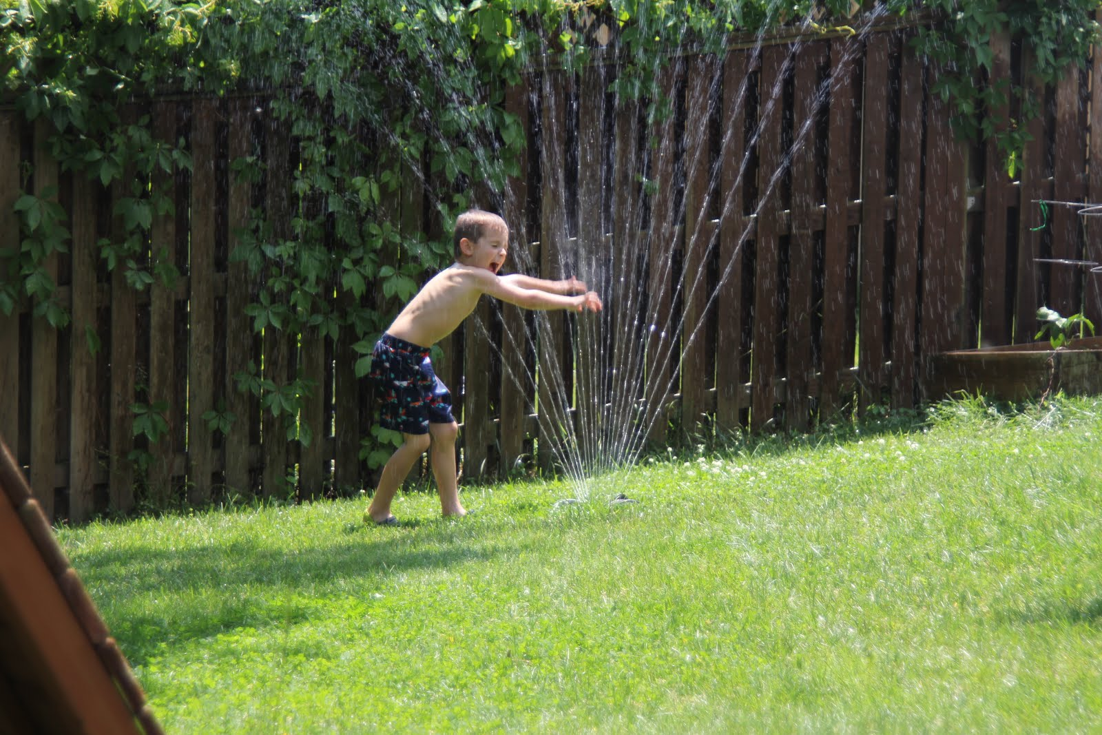 here now playing in the sprinkler
