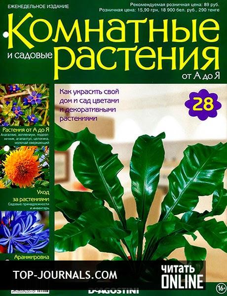 комнатные садовые растения фото и названия