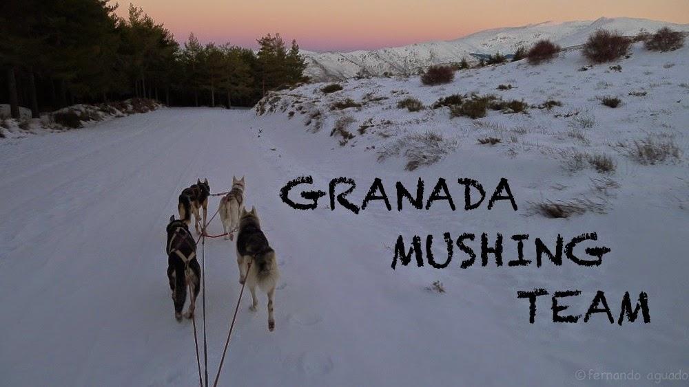 Granada Mushing