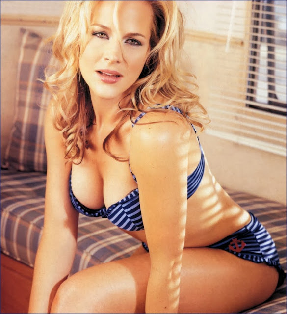 Sexy Julie Benz Wallpapers