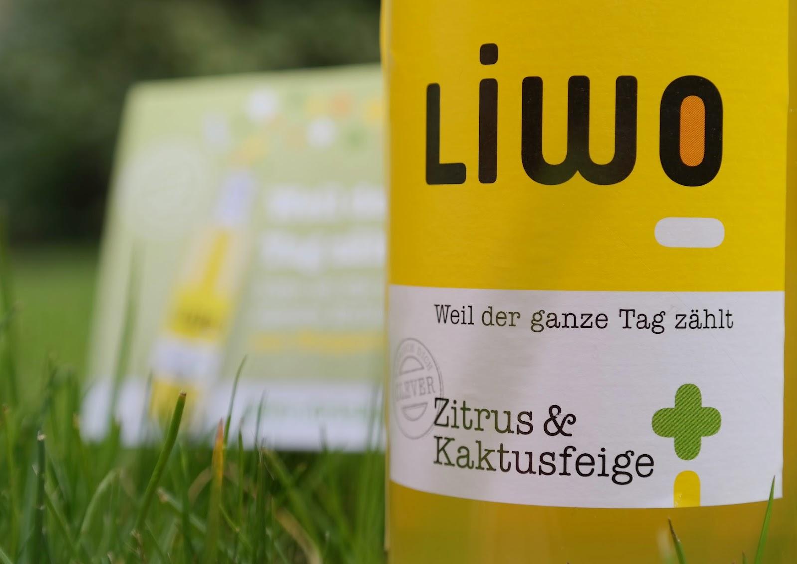 Die Energiewende: Für einen stabileren Energiehaushalt! Liwo aus Wuppertal