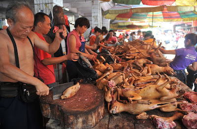 Bán buôn bán lẻ thịt chó thui rơm tại Hà Nội
