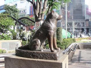 hachiko perro japon