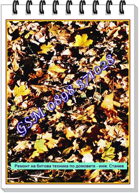 есен, ремонт, ремонт на перални по домовете, София, ремонт на перални, Борово, ремонт на микровълнови, ремонт на телевизори