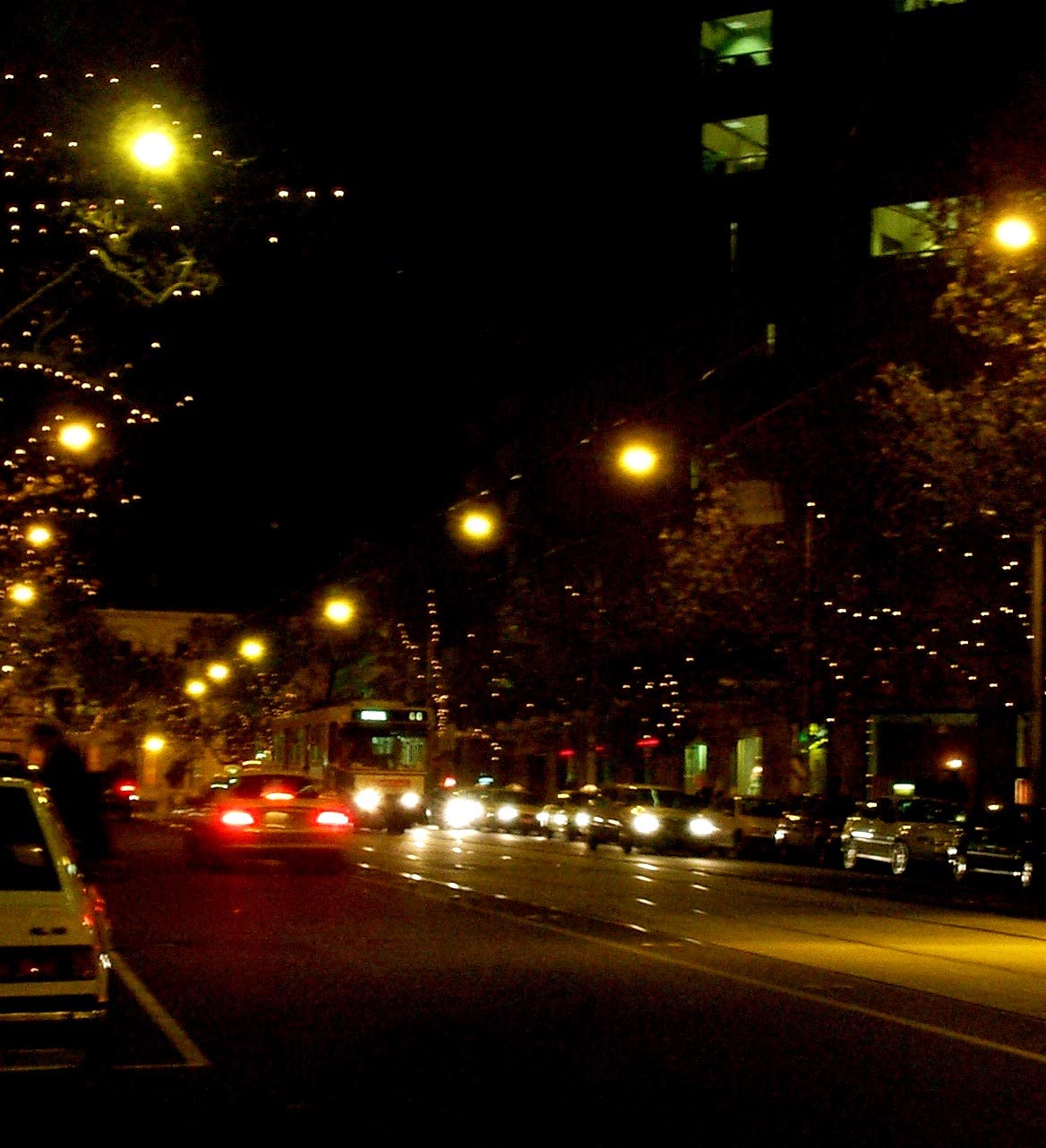 Fairy lights in trees lining Collins Street