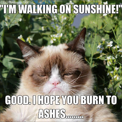 Tard the grumpy cat. I'm walking on sunshine. Good, I hope you burn to ashes!
