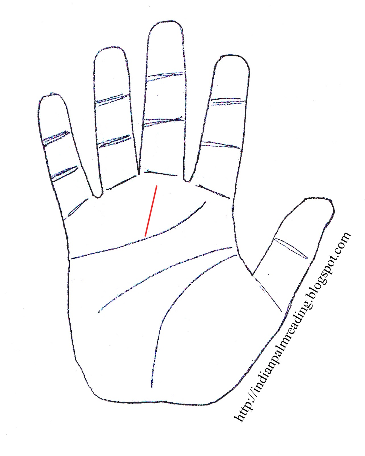 Meaning of Fate Line In Indian Palmistry | INDIAN PALM READING ...