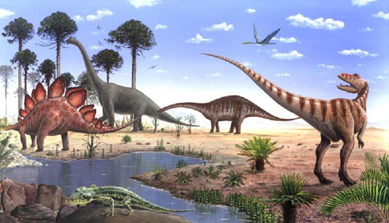 Eras Geologicas Cenozoica Era Cenozoica