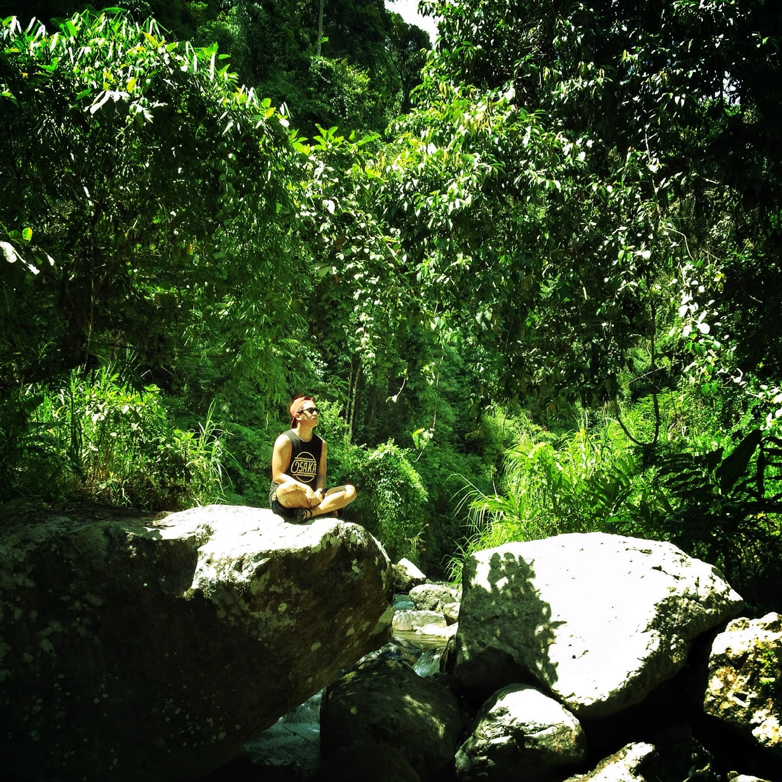 Forrest of Baguio Village Diffun Quirino