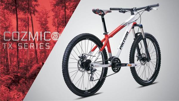 Polygon Bicycle