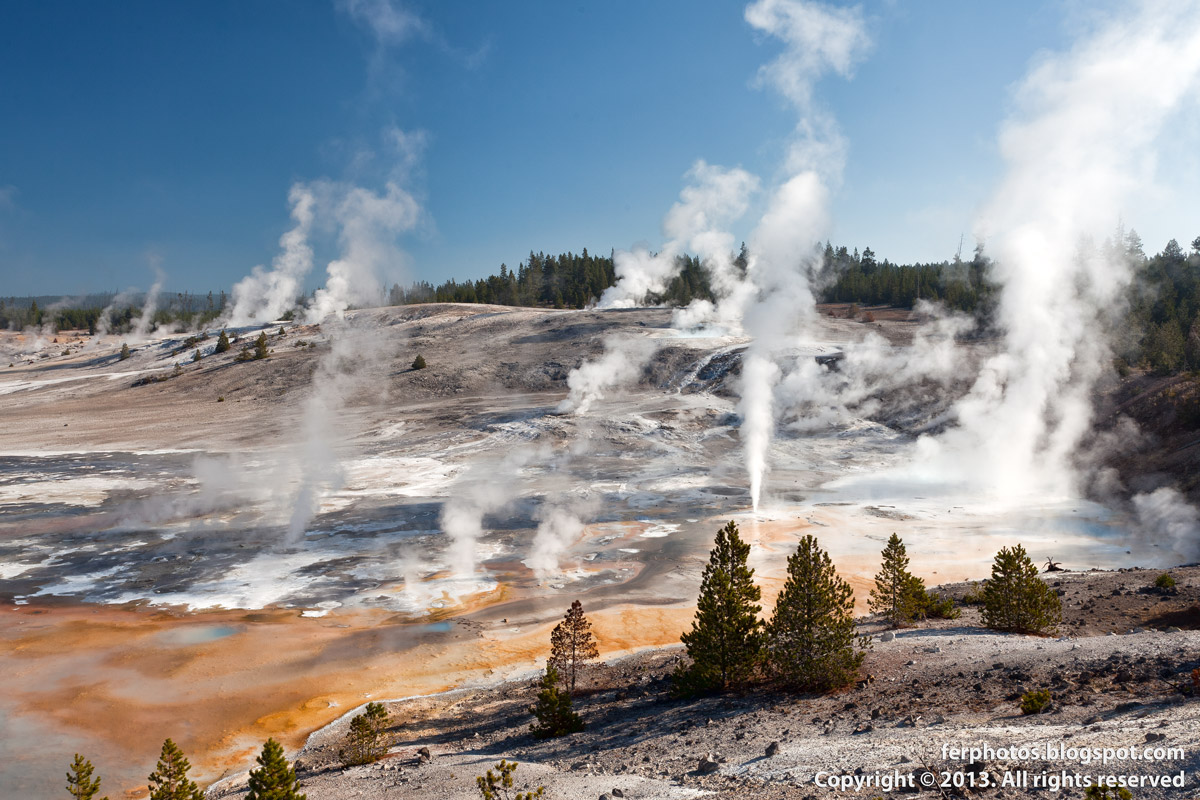 Norris Geyser Basin Yellowstone National Park hot springs fumaroles steam