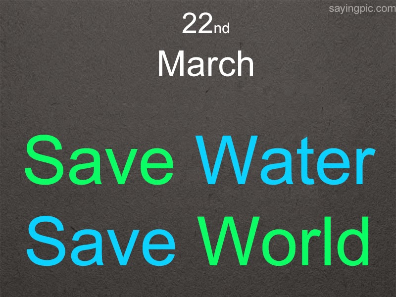 Quotes About Water Pleasing World Water Day  Quotes For Increase The Awareness Of People To
