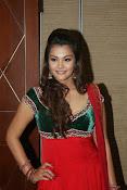 Naziya hussain latest glamorous photos-thumbnail-10