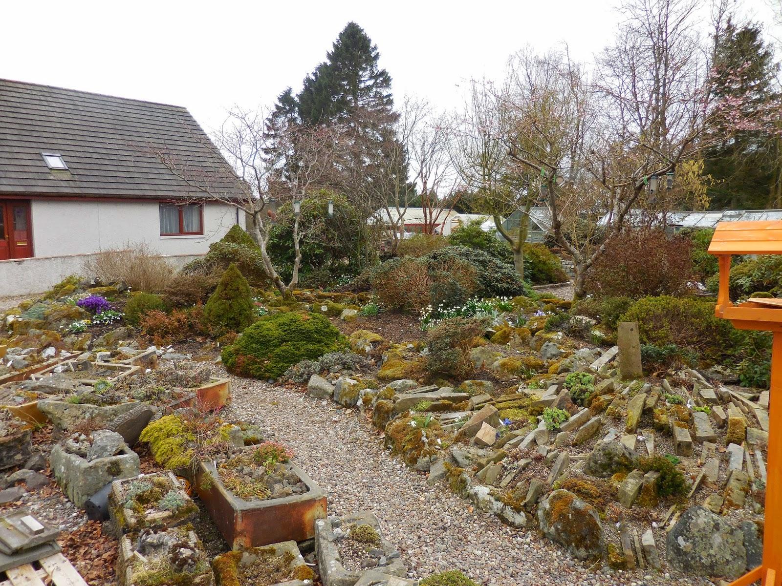 Alpine Houses of England and Scotland
