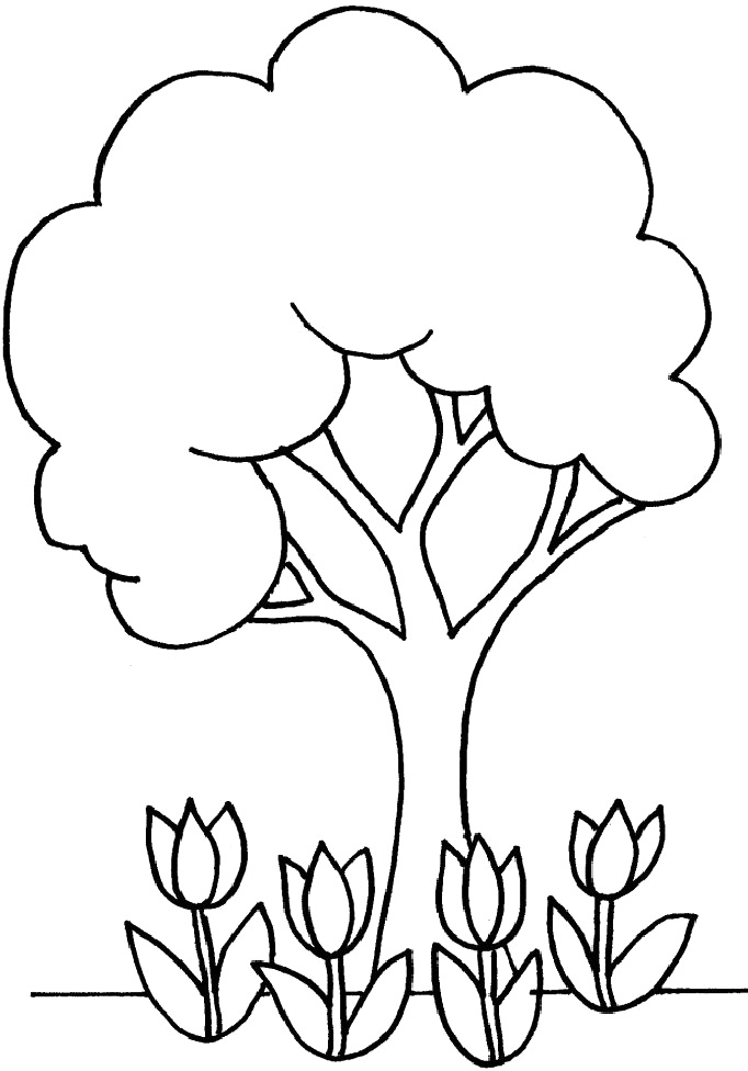 desenhos de  u00e1rvores para colorir e imprimir