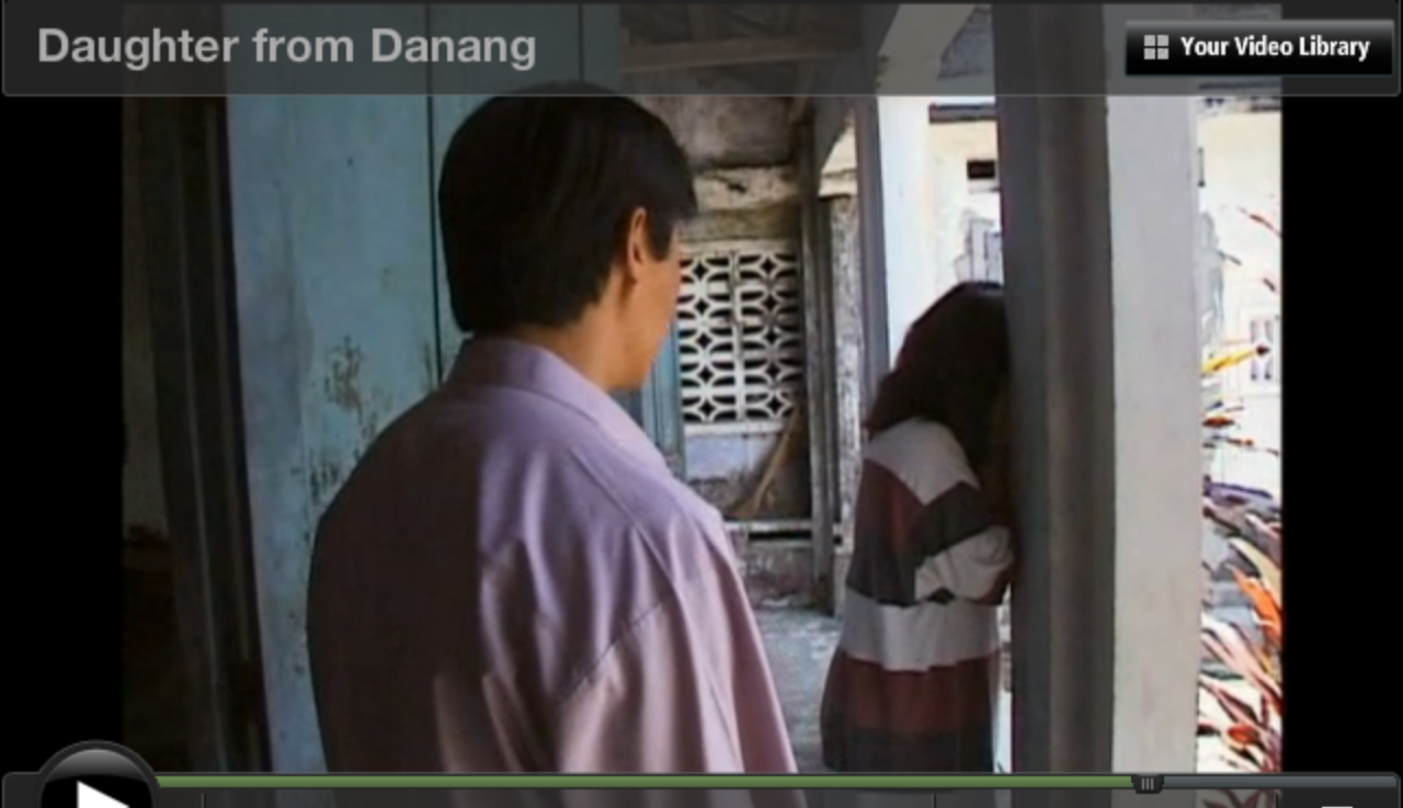 essay about documentary daughter from danang Here, my daughter is, thinking all i want is money (i want to connect this to the end by showing how heidi experienced cs and use the language barrier as an example.