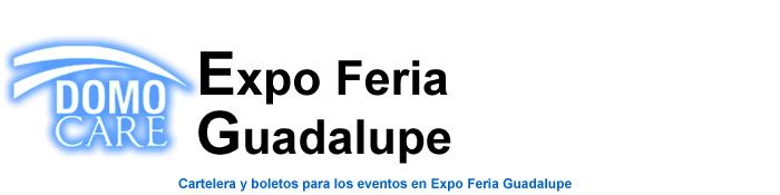 Boletos Palenque Expo Feria Guadalupe 2015 Nuevo Leon: Monterrey