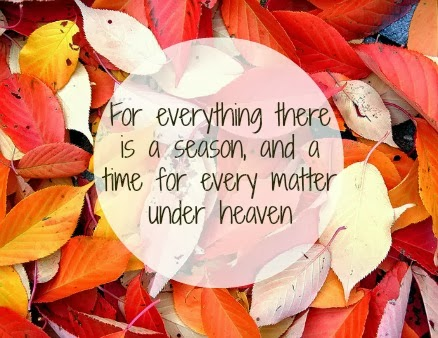 Ecclesiastes 3:1, leaves, fall, autumn, for everything there is a season, turn, seasons