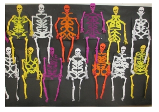 http://www.scholastic.com/teachers/top-teaching/2013/10/crafty-symmetric-skeletons?eml=TNL/e/20141001////Oct_Update//blog/35_WID//SL2///&ym_MID=1545681&ym_rid=13500887