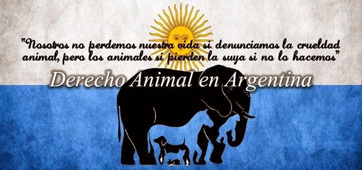 derecho animal en argentina