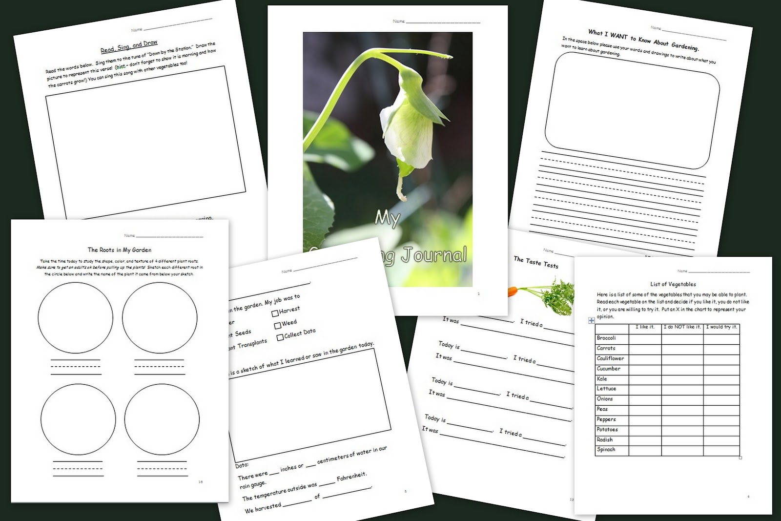 The Educators Spin On It Growing Peas with Kids in the