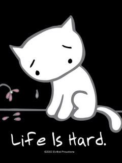 http://4.bp.blogspot.com/-Lrfjc6povVQ/TWZwxOHsaCI/AAAAAAAAJb8/A16Cy-dQG4E/s1600/Life_Is_Hard.jpg