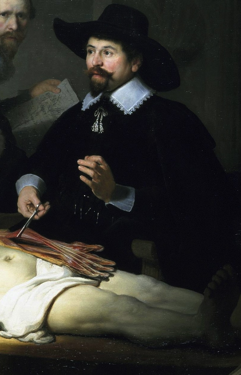 Anatomy Lesson of the Dr Tulp, Rembrandt - ThingLink