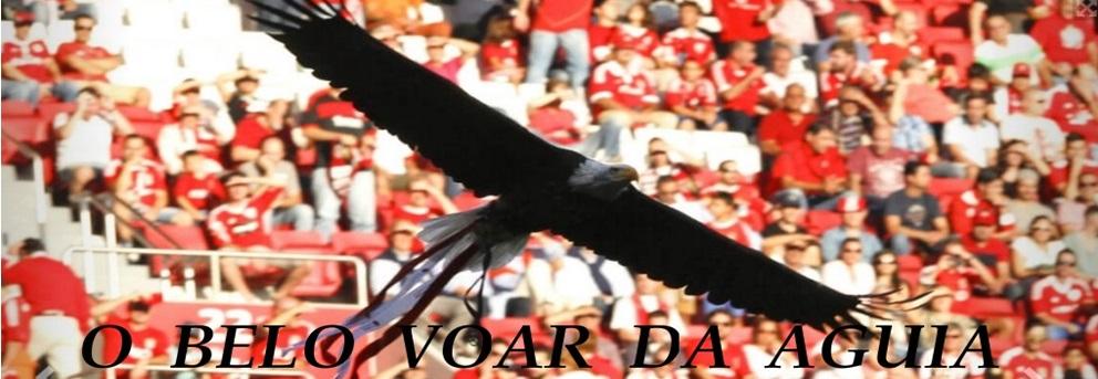 O Belo Voar da Águia