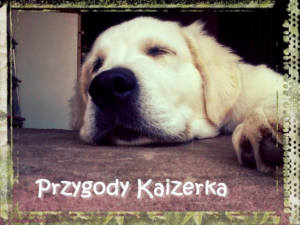 Przygody Kaizerka