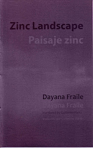 Zinc Landscape / Paisaje zinc