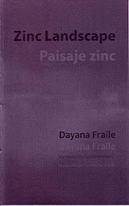 Zinc Landscape / Paisaje zinc