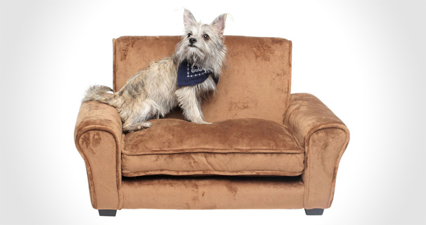 Pet Couch Enchanted Home Pet Ultra Plush Club Chair