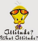 Get the right attitude