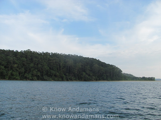 Guitar Island, Andaman and Nicobar Islands