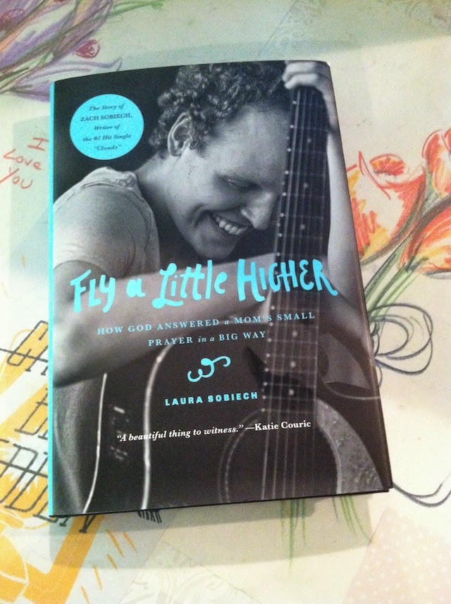 Fly A Little Higher Book Cover