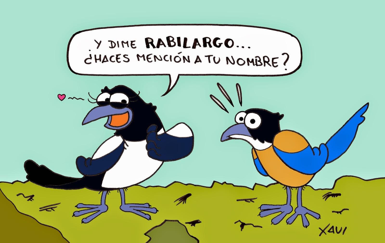 Urraca y Rabilargo