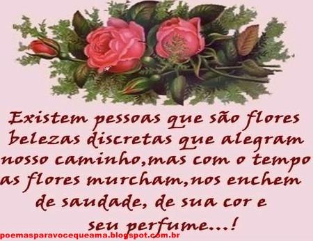 Imagens De Rosas Vermelhas Com Frases Romanticas