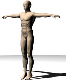 El hombre desnudo es arte