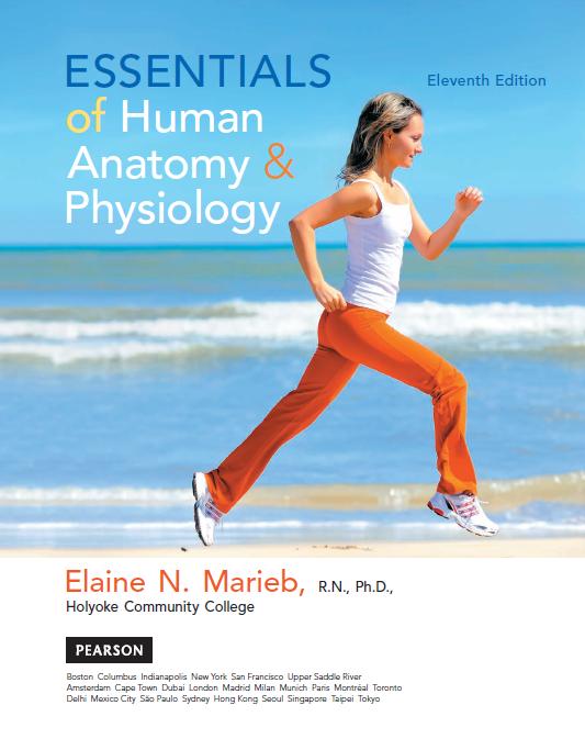 Famoso Human Anatomy And Physiology 9th Edition Marieb And Hoehn ...