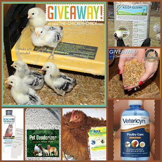Giveaway at The Chicken Chick®