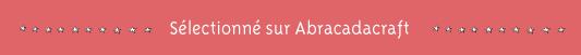 http://www.abracadacraft.com/billet-de-blog/trousse-%C3%A0-barrettes-54079