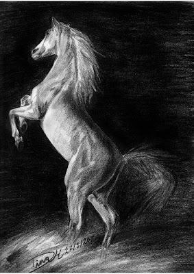 رسم حصان بالرصاص والفحم