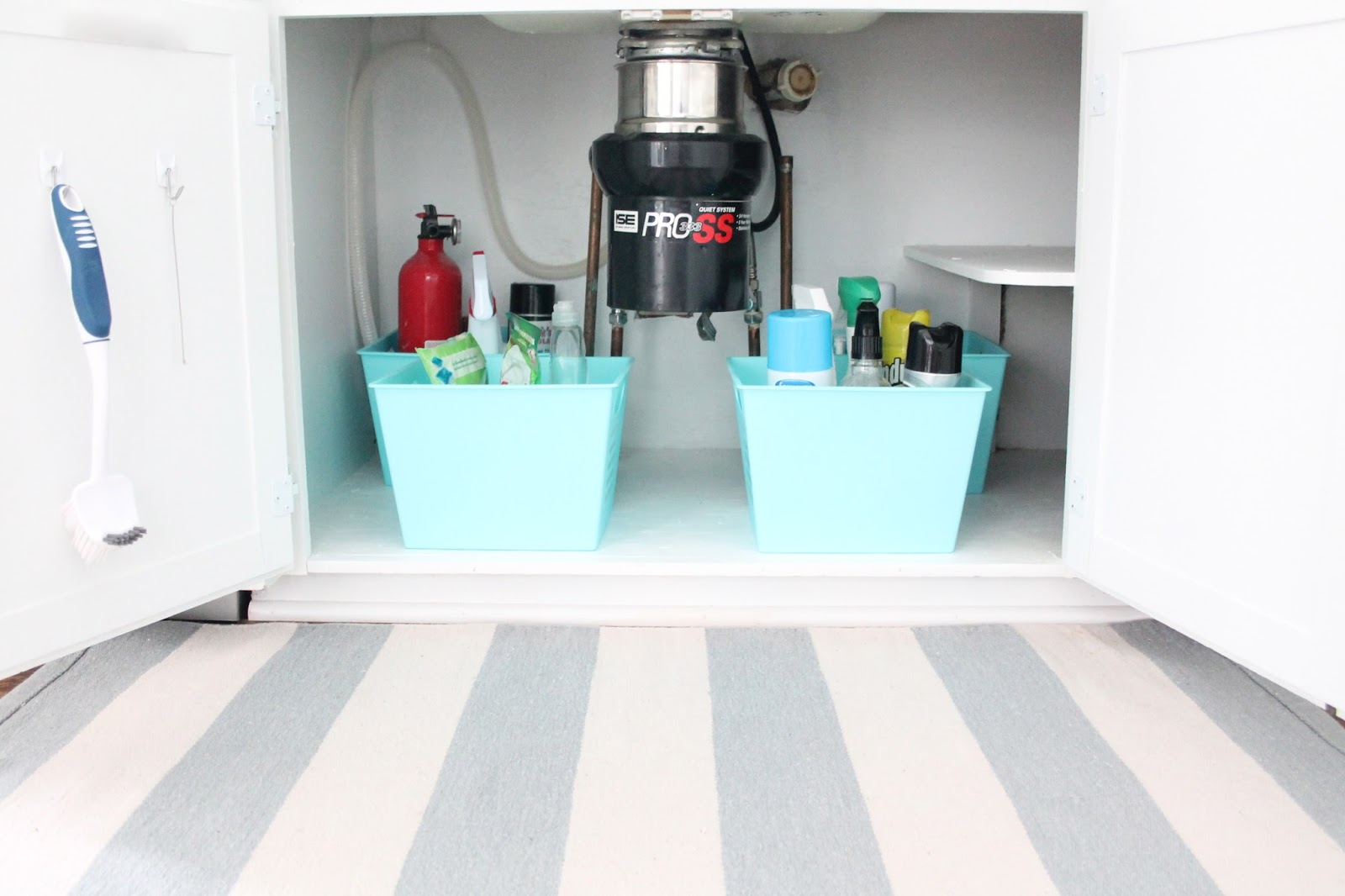 Organize Under The Sink Space