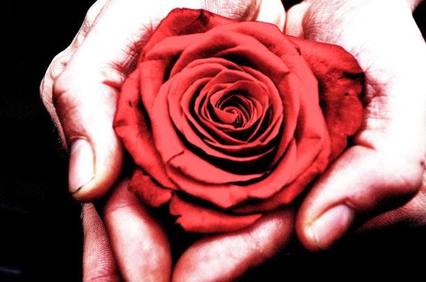 Due Monaci Coltivavano Rose. Il Primo Si Perdeva Nella Contemplazione Della  Bellezza E Del Profumo Delle Sue Rose. Il Secondo Tagliava Le Rose Più Belle  E ...