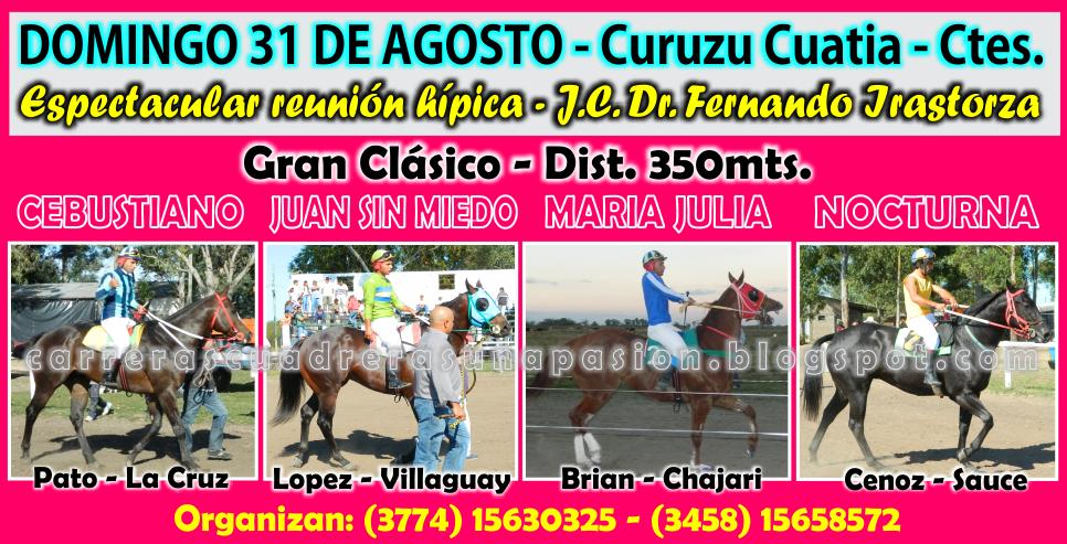 C. CUATIA - CLASICO 350 - 2